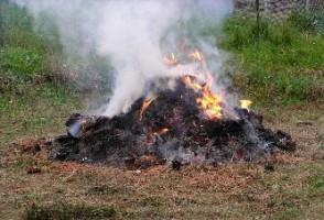 Georgia burn ban in effect