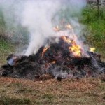 Georgia's open burn ban begins today