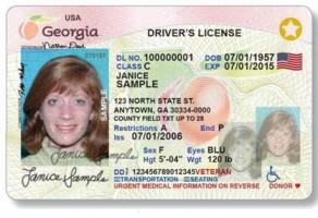 Sample Georgia License